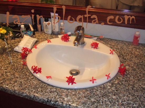 تزئین حمام و توالت